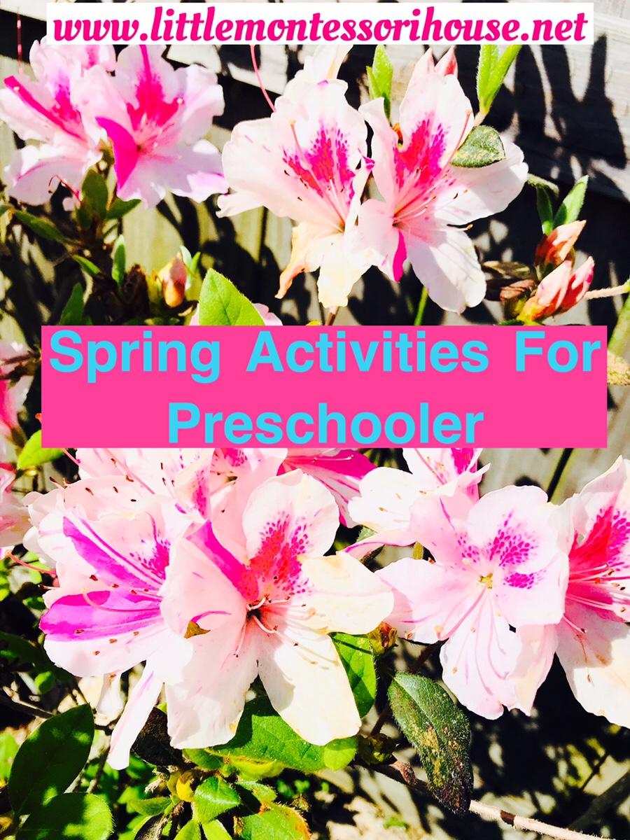 Spring Activities ForPreschoolers