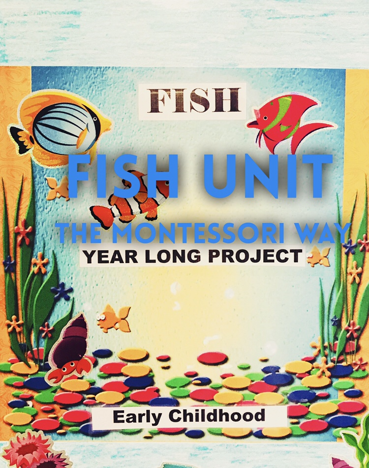 Presenting Fish Unit Study The Montessori Way