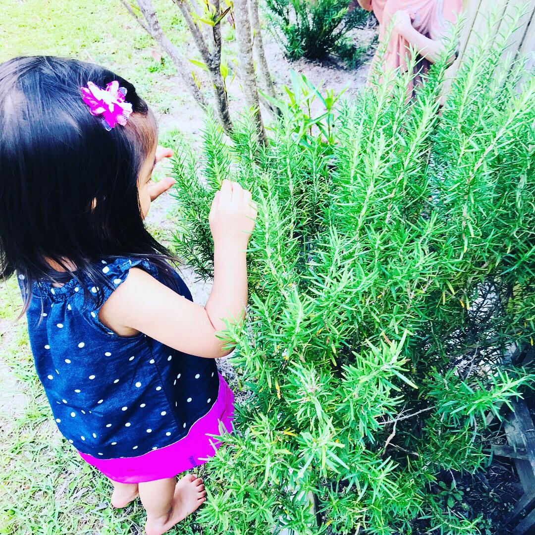 Montessori Inspired Garden Activities For Toddler AndPreschoolers