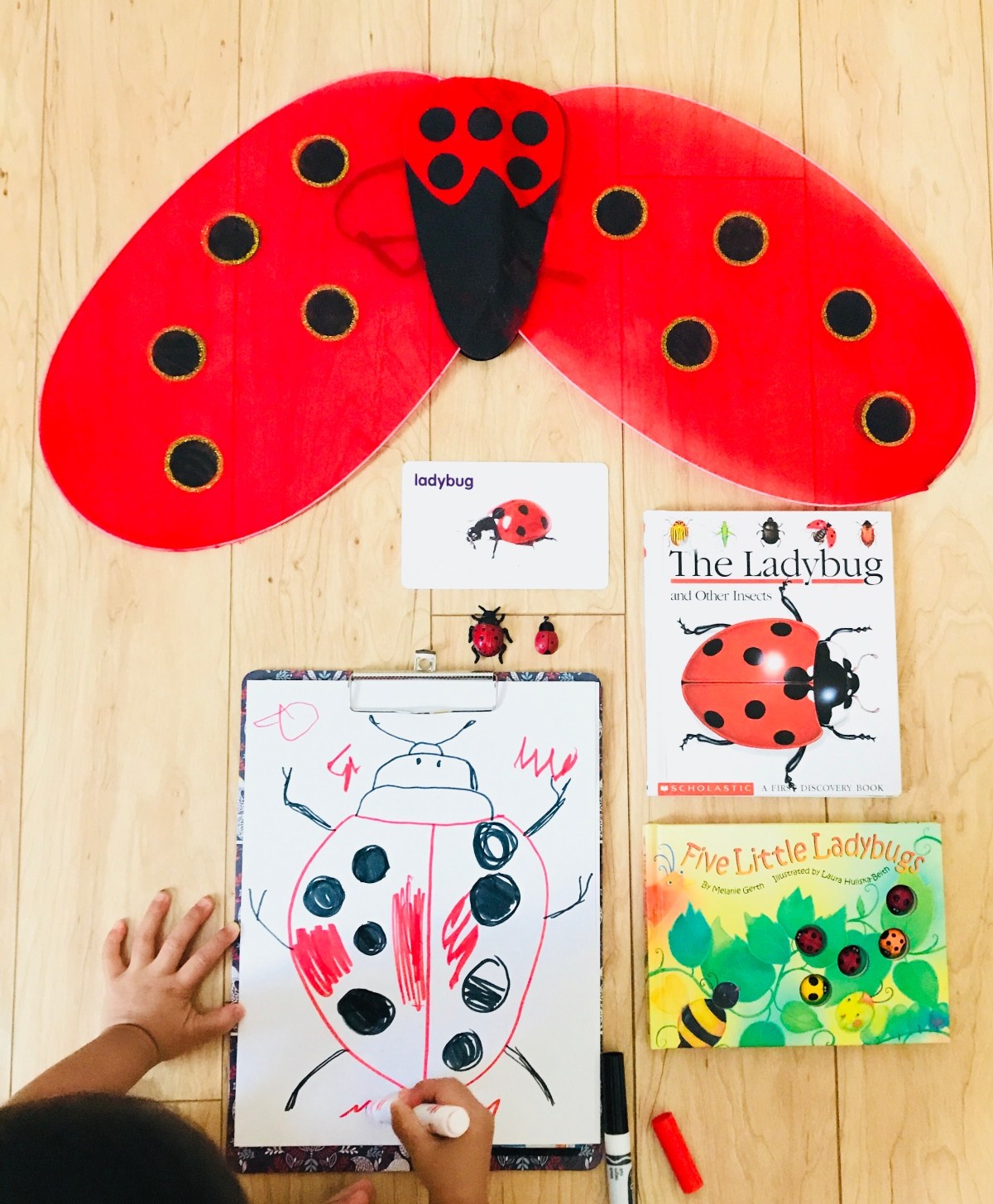 LadyBug Unit And Activities For Preschool 3 to 5 Year Olds