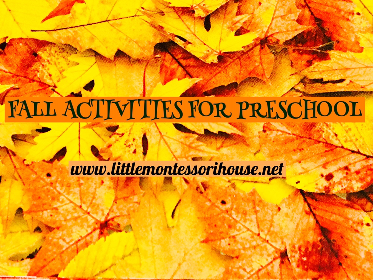 Fall Activities For Toddler And Preschool